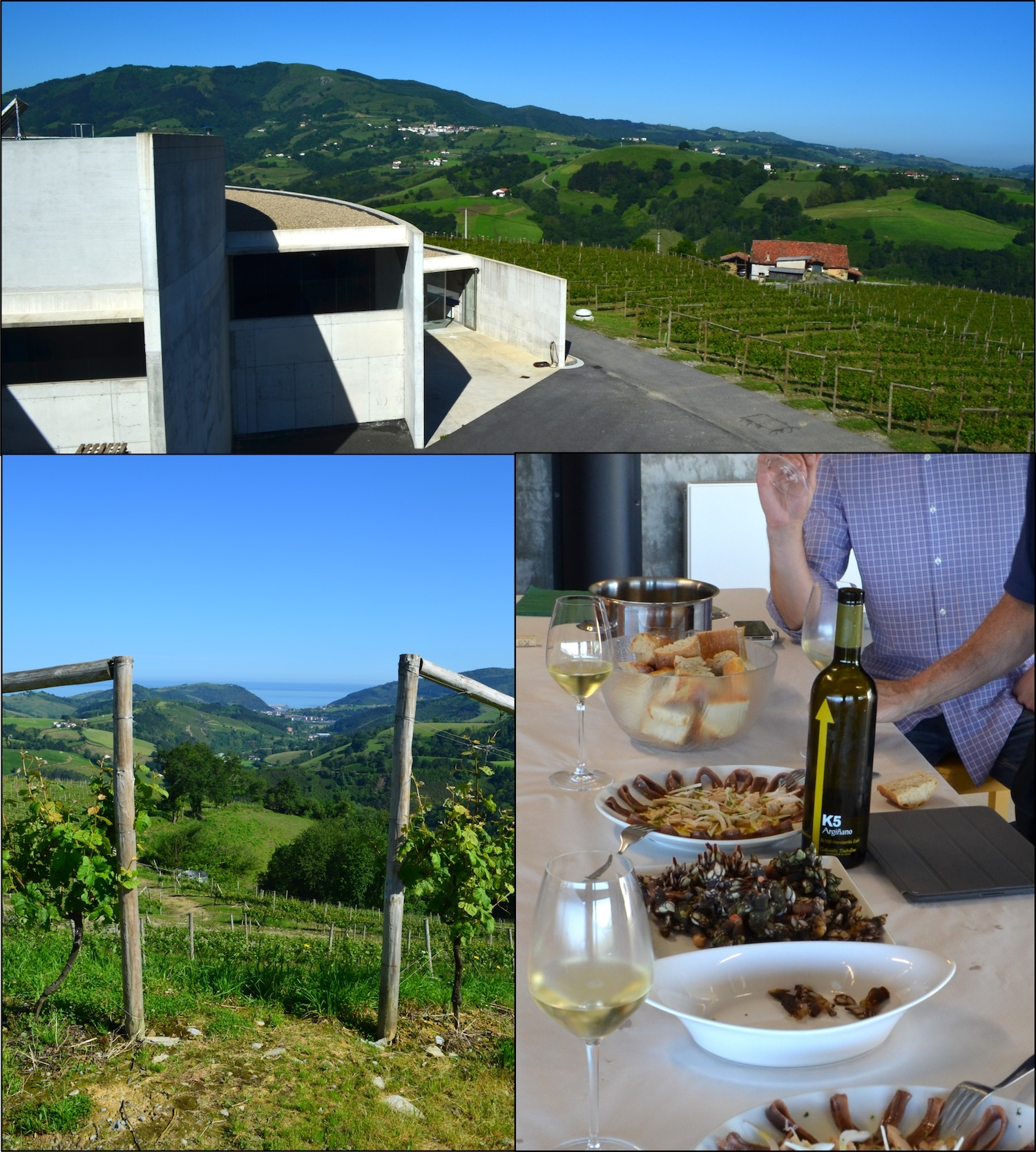 Modern, gravity-flow bodega and immaculate vineyards overlooking the Cantabrian Sea. K5 blooming and blossoming with fresh anchovies, jamón ibérico and Cantabrian percebes (barnacles)!