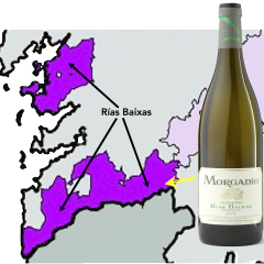 Adegas Morgadío and the Birth of Modern Albariño